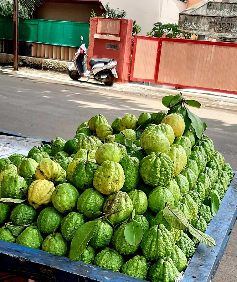 Die Frucht sellar, die Guave auf Straße durch das Verkaufsinstrument verkaufend stockfotos