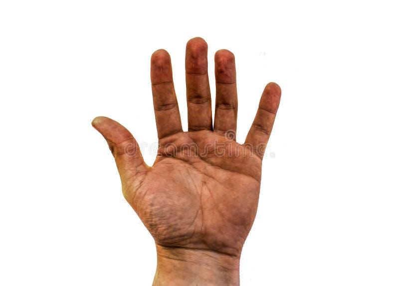 Die geöffnete schmutzige Hand des Mannes lokalisiert auf weißem Hintergrund lizenzfreies stockbild