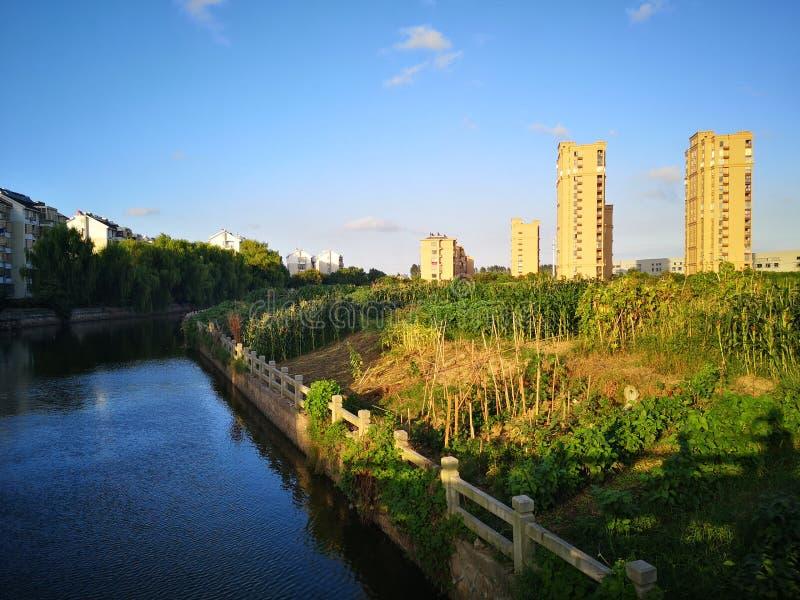 Die Gebäude, die über den ruhigen Fluss nachdenken stockbilder