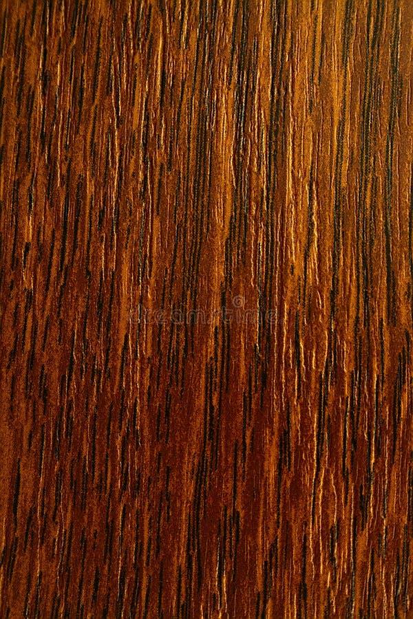 Die gefärbte Eiche, masern altes Holz stockbilder