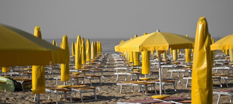 Die gelben Regenschirme auf dem Strand morgens noch verlassen stockbild