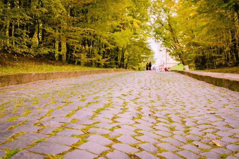 Die gepflasterte Straße geht unten zur Unterseite, von der die gelben Apfelblätter liegt stockfotos