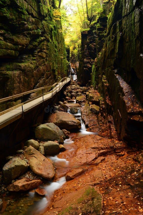 Die Gerinne-Schlucht, Franconia-Nationalpark, New Hampshire lizenzfreies stockbild