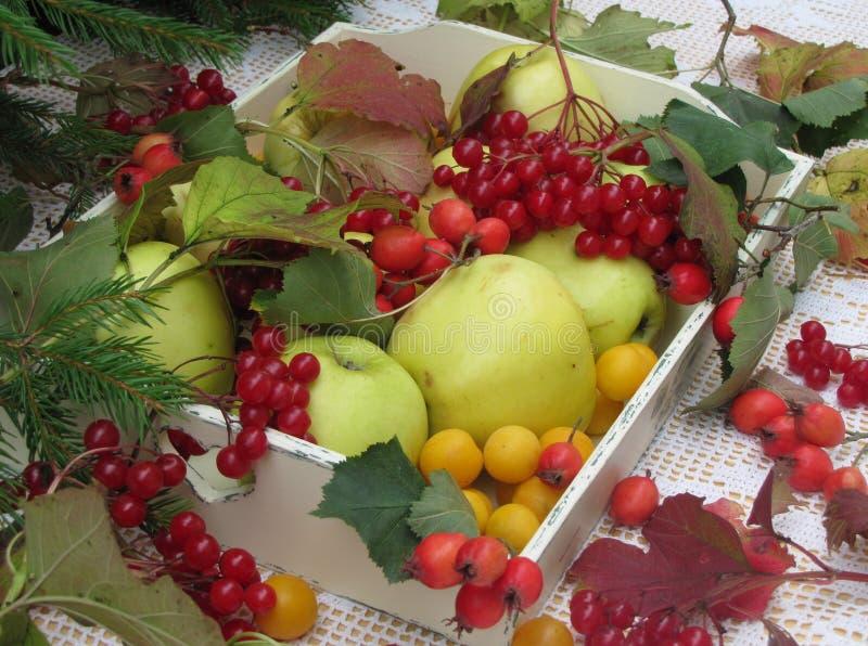 Die Geschenke des Herbstes stockfotos