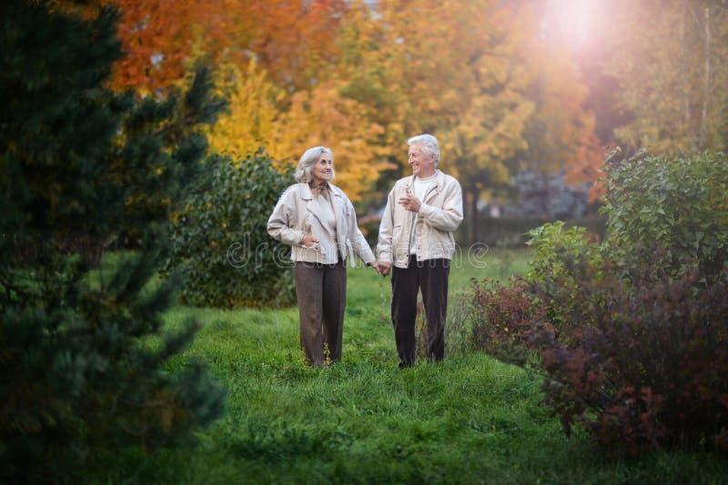 Die glücklichen älteren Paare, die in den Herbst gehen, parken stockfotografie