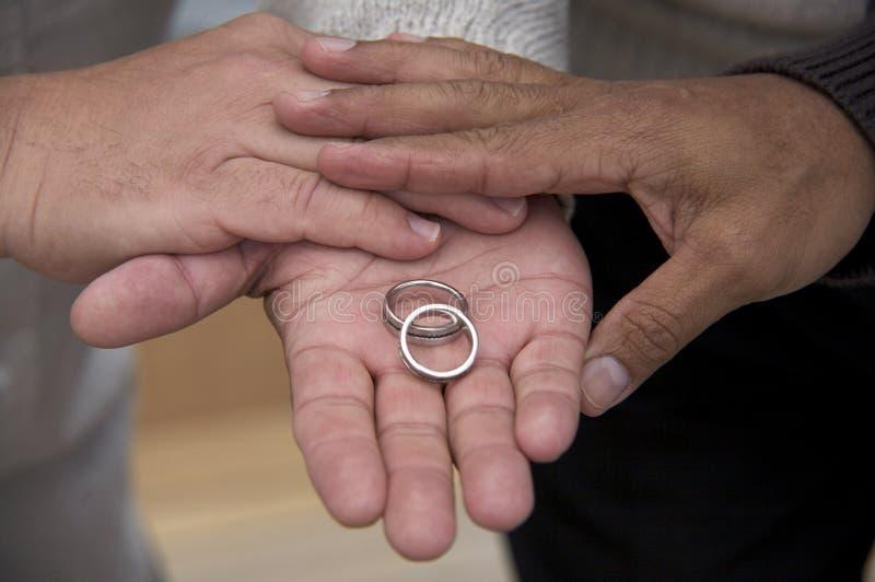 Die gleichen Geschlechts-Verbindungs-Ringe stockfotos
