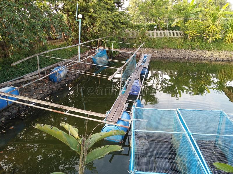 Die Grillfische in den Käfigen in einem Bauernhof in Thailand lizenzfreies stockbild