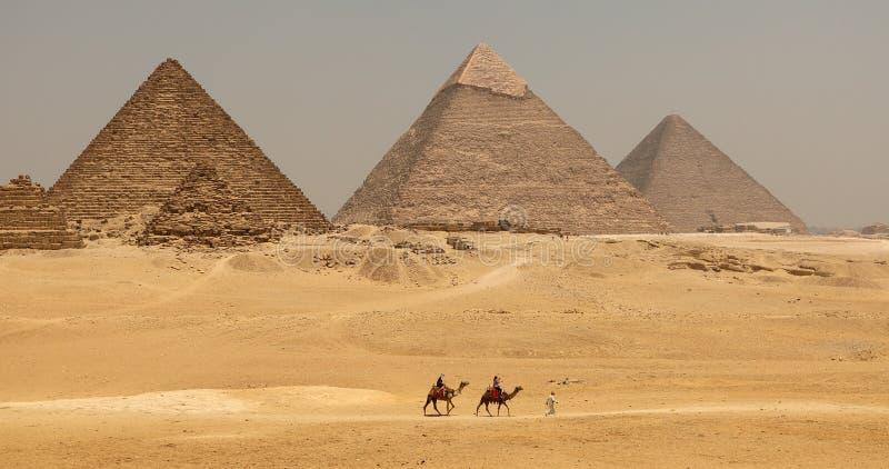 Die große Pyramide mit Kamel lizenzfreie stockfotos