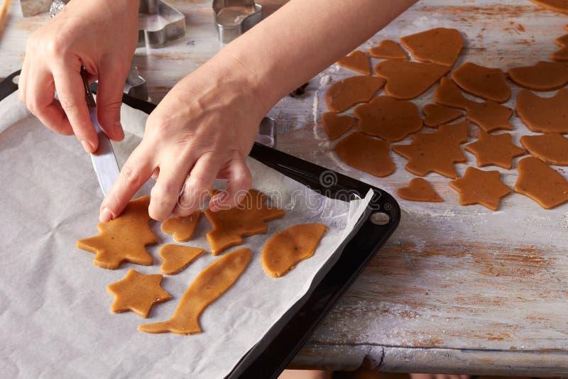 Die Hände der Frau setzen rohe Ingwerplätzchen auf Backblech lizenzfreie stockfotos