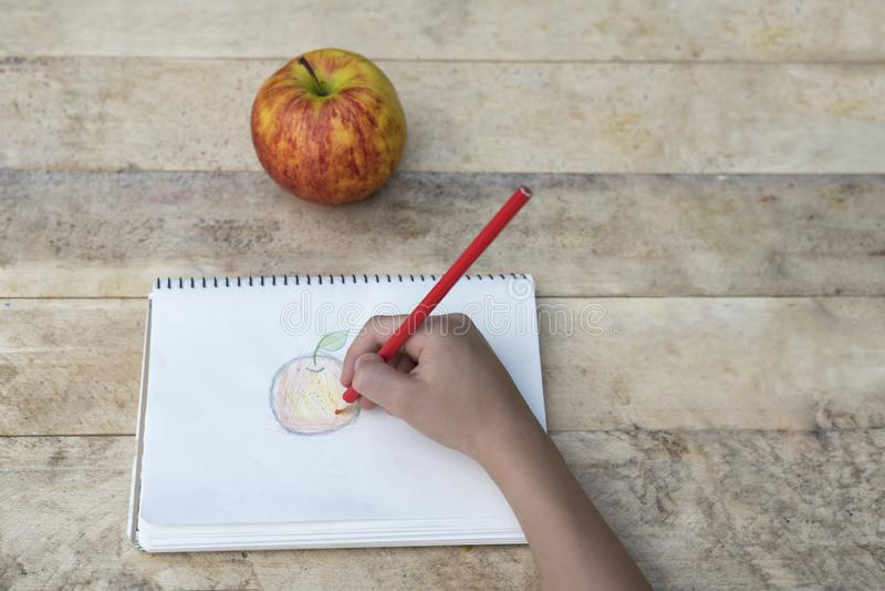 Die Hände der Kinder zeichnen einen Apfel mit farbigen Bleistiften Beschneidungspfad eingeschlossen lizenzfreie stockfotografie