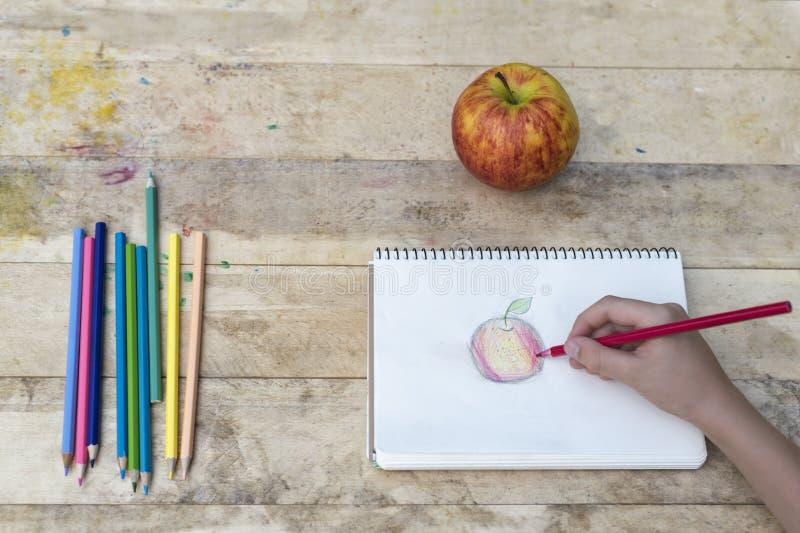 Die Hände der Kinder zeichnen einen Apfel mit farbigen Bleistiften Beschneidungspfad eingeschlossen stockfotos