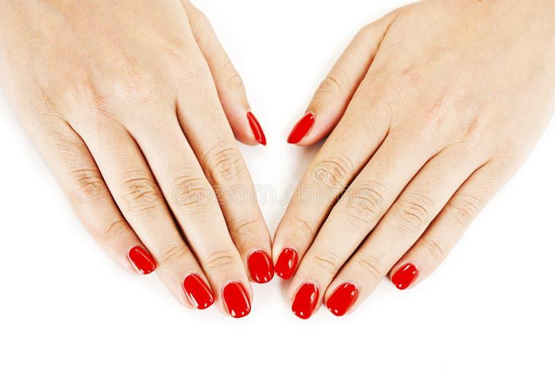 Die Hände der schönen manikürten Frau mit rotem Nagellack stockbild