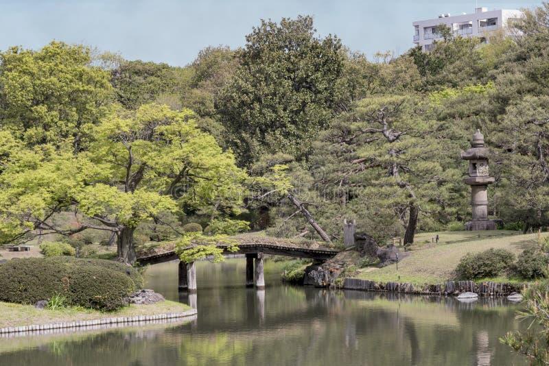 Die hölzerne japanische Brücke Dentsuru-Braut auf dem Teich von Rikugie lizenzfreie stockfotos