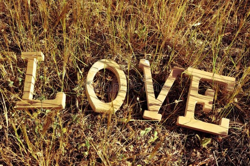 Die hölzernen Buchstaben, die das Wort bilden, lieben auf dem Gras stockfotografie