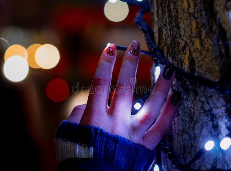 Die Hand auf dem Baum stockfoto