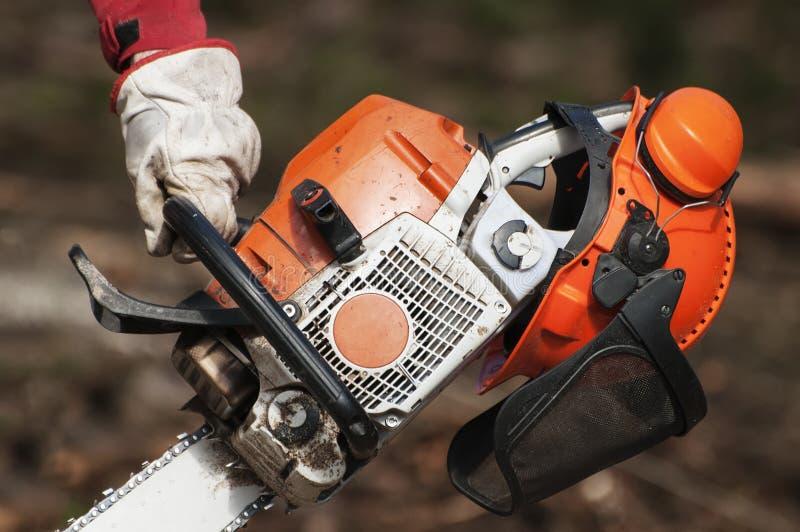 Die Hand der Forstwirtschaftsarbeitskraft, die eine Kettensäge und einen Sturzhelm mit Ohrmuffen hält stockfotografie