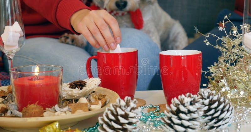 Die Hand der Frau, die Eibisch von der Schale heißer Schokolade herausnimmt lizenzfreie stockfotografie