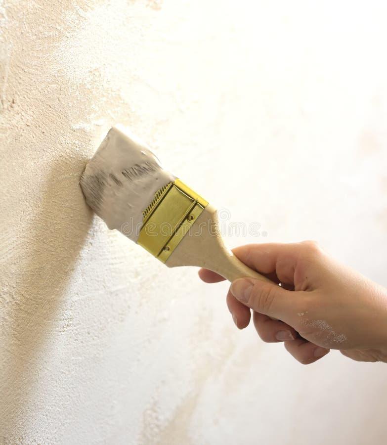 Die Hand der Frau mit Bürste gemalter Wand stockfoto