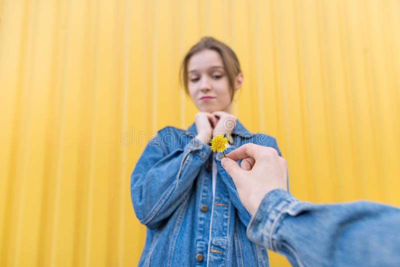 Die Hand des Mannes gibt einem Mädchen auf dem Hintergrund einer gelben Wand eine kleine Blume lizenzfreies stockfoto