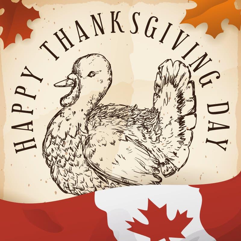Die Hand gezeichnete Türkei in der Rolle und in der kanadischen Flagge für Danksagung, Vektor-Illustration stock abbildung