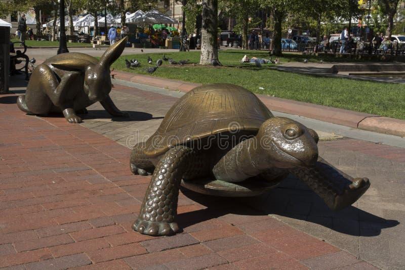 Die Hasen und die Schildkröte lizenzfreies stockbild