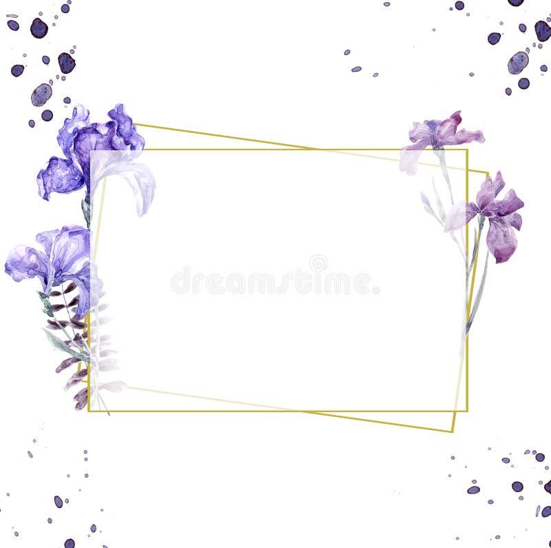 Die Heiratseinladung, mit Blumen laden Karte, Rahmendruck der Blumen- und grünen Blätter des Aquarellirisrosas geometrischen gold vektor abbildung