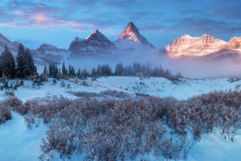 Die helle rote Sonne ?ber Oberseiten der Pelzb?ume Berg Assiniboine, alias Assiniboine-Berg, ist ein Pyramidenh?chstberg, der auf stockfoto
