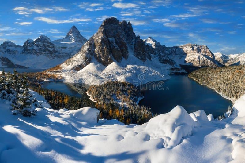 Die helle rote Sonne ?ber Oberseiten der Pelzb?ume Berg Assiniboine, alias Assiniboine-Berg, ist ein Pyramidenh?chstberg, der auf lizenzfreies stockbild