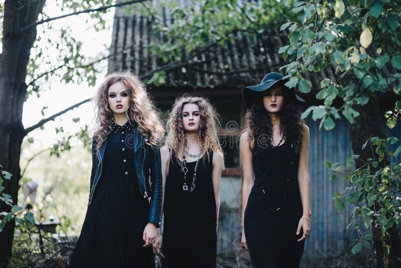 Die Hexe mit drei Weinlesen gehen zum Sabbat lizenzfreies stockbild