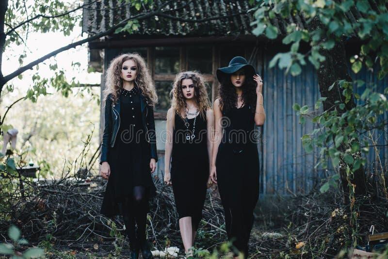 Die Hexe mit drei Weinlesen gehen zum Sabbat stockfotografie