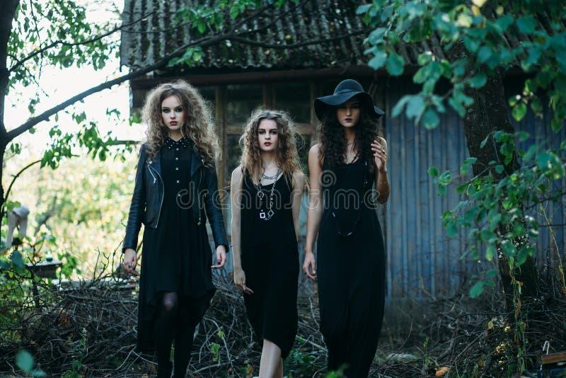 Die Hexe mit drei Weinlesen gehen zum Sabbat stockfotos