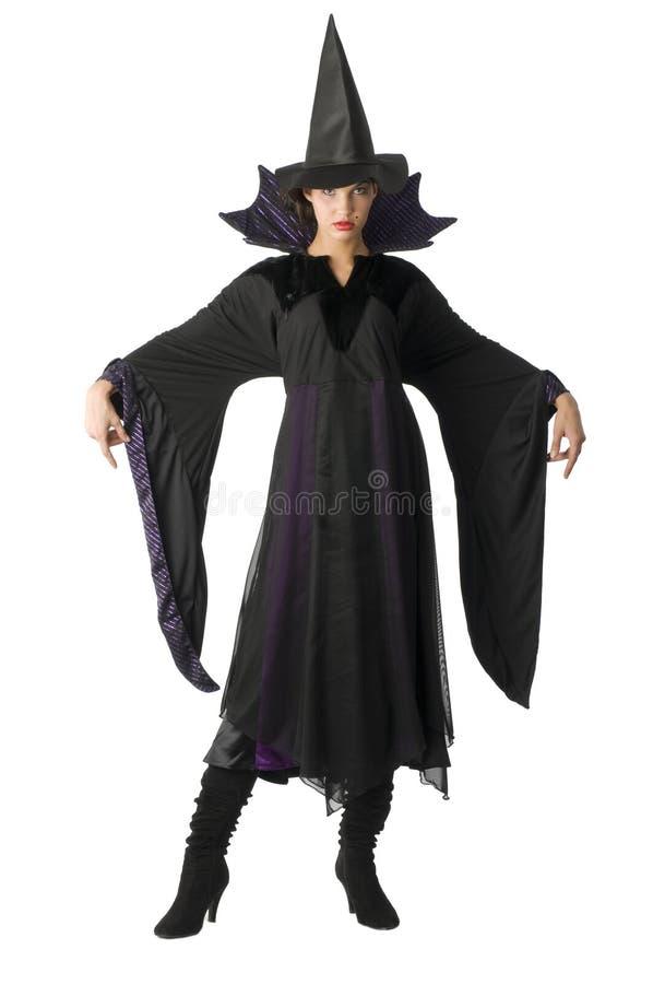 Die Hexe mit Hut stockbild
