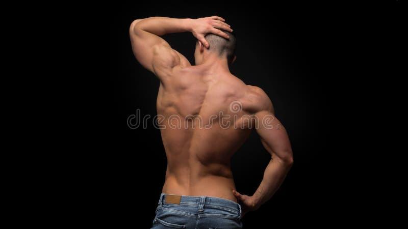 Die hintere Ansicht des Torsos des attraktiven männlichen Bodybuilders auf dunklem Hintergrund lizenzfreie stockfotos