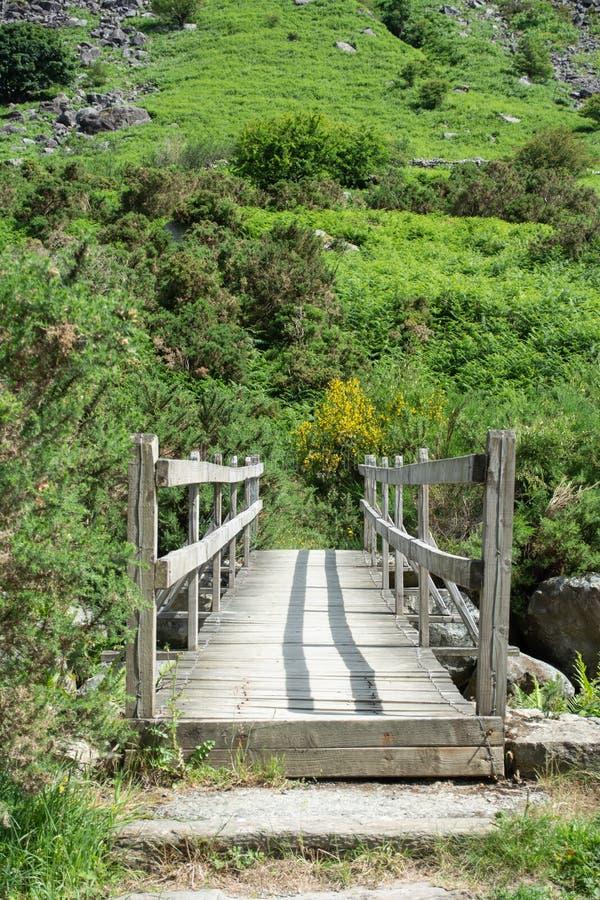 Die Holzbrücke über einem Strom in den wicklowmountains lizenzfreies stockbild