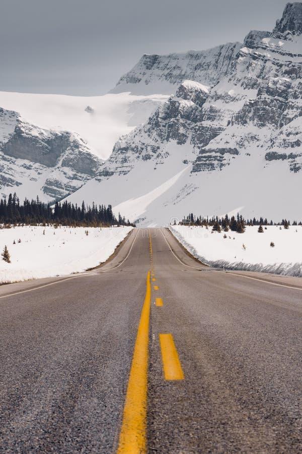 Die Icefields-Allee ist eine der großartigsten Straßen der Welt Bietet schöne Landschaft, aufpassen der wild lebenden Tiere und v lizenzfreie stockbilder