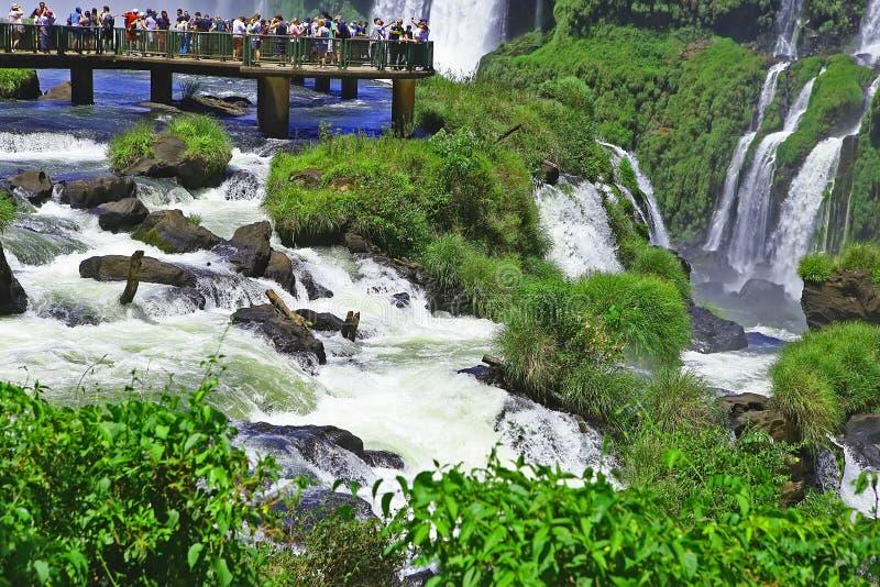 Die Igua?u-Wasserf?lle und Fluss, brasilianische Seite stockbild
