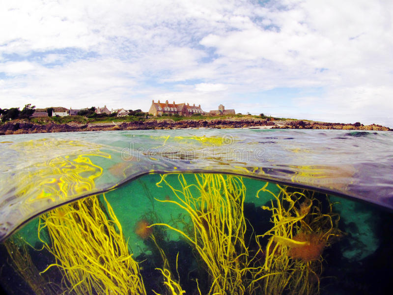 Die Insel von Iona lizenzfreies stockbild