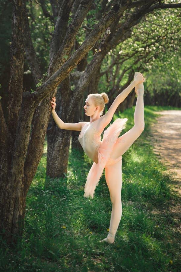 Die junge ausdehnende Ballerina und trainieren vor Tanz draußen stockfotos