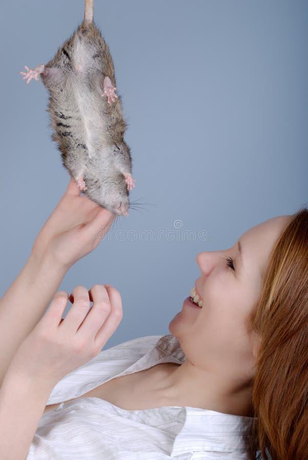Die junge Frau bügelt eine Ratte lizenzfreie stockbilder