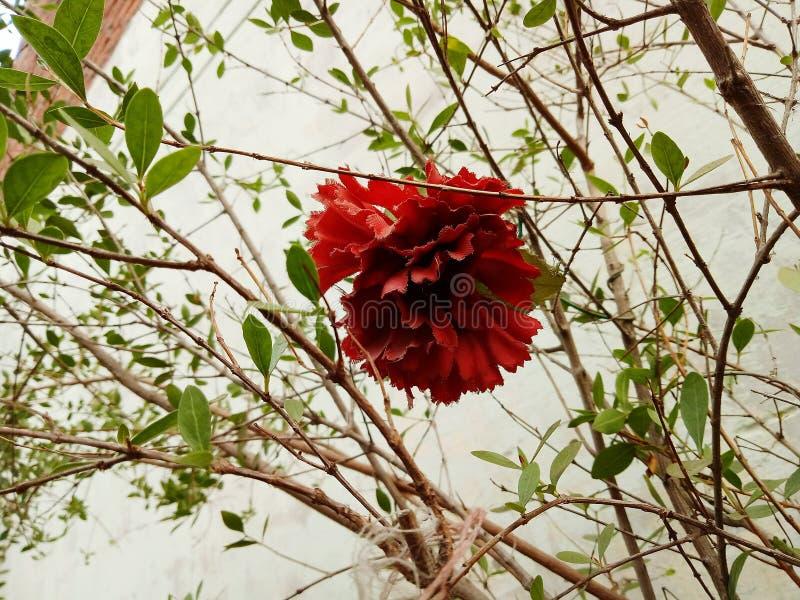 Die künstliche Blume stockfoto