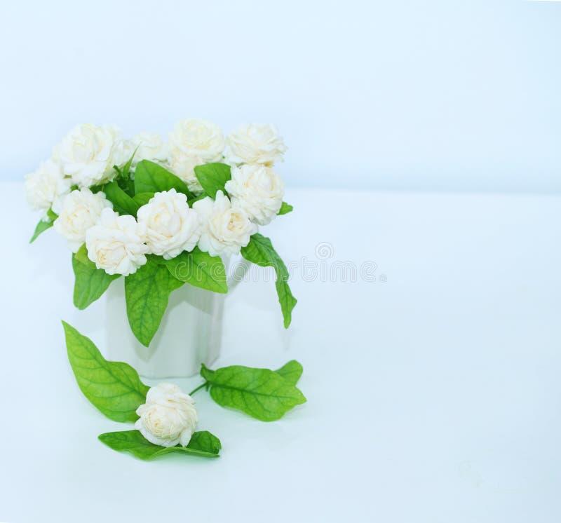 Die künstliche Jasminblume im Topf am weißen Tisch mit lizenzfreies stockbild