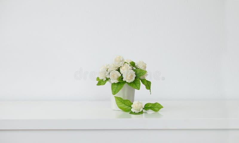Die künstliche Jasminblume im Topf am weißen Tisch mit dem weißen Wandhintergrund lizenzfreie stockfotos