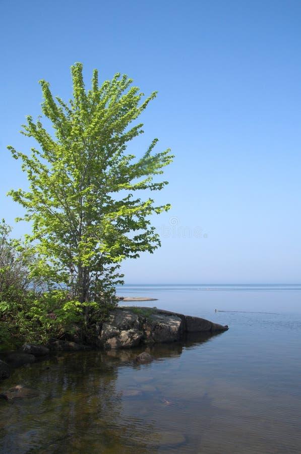 Download Die Küstenlinie. stockfoto. Bild von draußen, felsen, kayaking - 859232