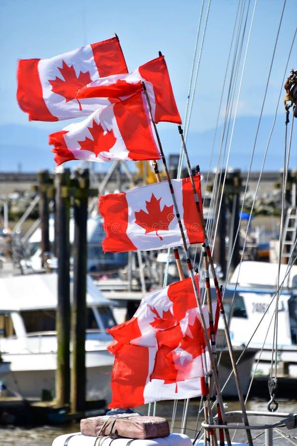 Die Kanada-Flaggen bewegen in den Himmel wellenartig lizenzfreie stockfotografie