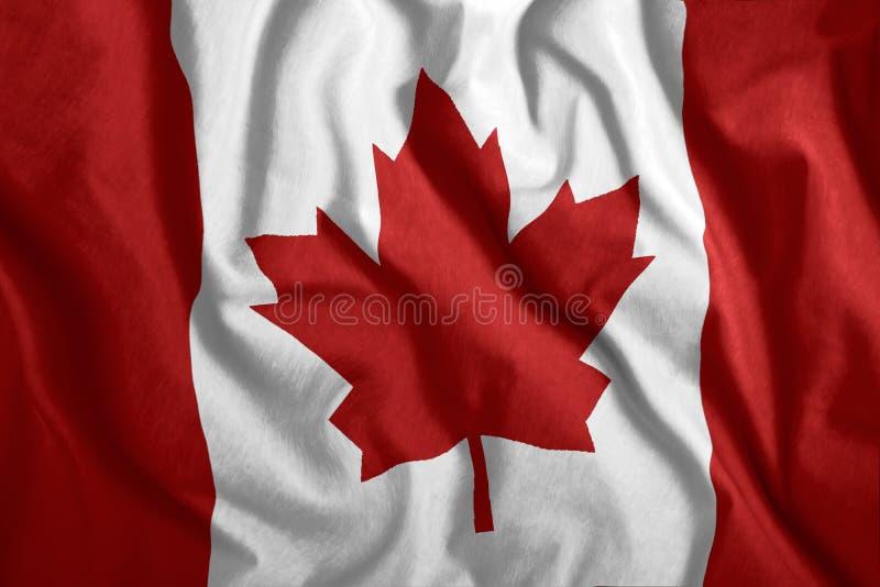 Die kanadische Flagge fliegt im Wind Farbenfrohe Nationalflagge Kanadas Patriotismus, patriotisches Symbol stock abbildung