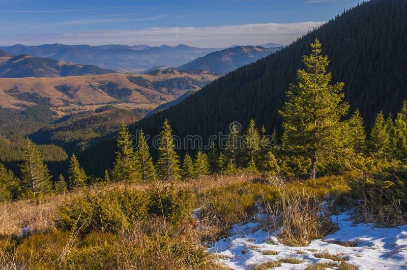 Die Karpaten im Vorfrühling lizenzfreie stockfotos