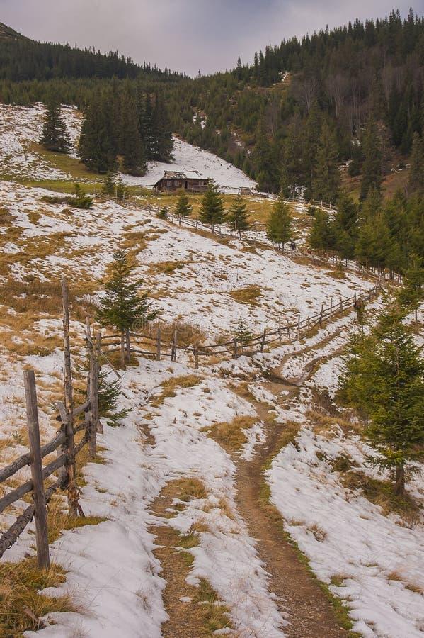 Die Karpaten im Vorfrühling stockfoto