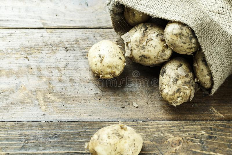Die Kartoffeln werden aus der Tasche heraus gegossen lizenzfreies stockfoto