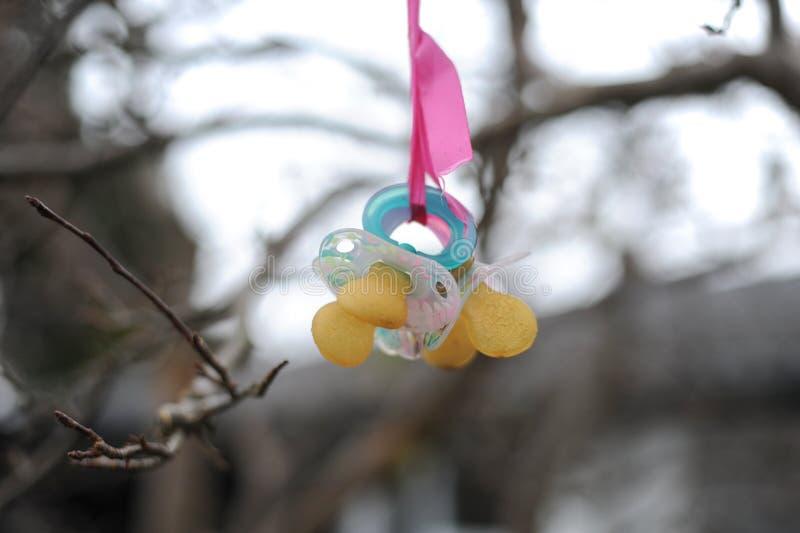 Die Kind-` s Nippel auf dem Baum lizenzfreie stockfotografie