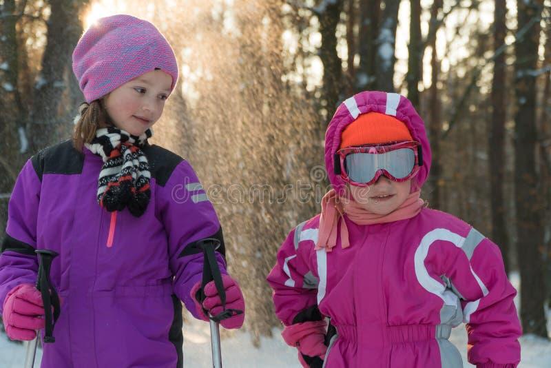 Die Kinder, die in den Waldwinter-Schneekindern Ski fahren, gehen in den Park stockbild